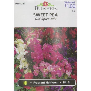 Burpee-Sweet Pea, Old Spice Mix Seed Packet