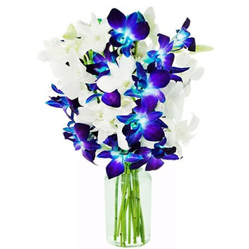 KaBloom - Fresh Flowers: Bouquet of 5 Blue Dendrobium Orchids, 5 White Dendrobium Orchids in a Clear-Colored 6.5