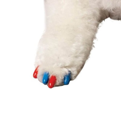 Canine Soft Claws 40-Pack Summer Colors Dog Nail Caps Kit, Small, Red and Blue