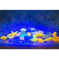 Glow Stones,Govine 60pcs Colorful Pebble Conch Shell in the Dark for Aquarium Fish Tank