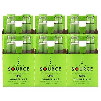 Llanllyr Source Ginger Ale Mixer (Case of 6 - 4 Packs, 24 Bottles Total)