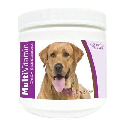 Healthy Breeds 1127-labs-003 60 Count Labrador Retriever Multi-Vitamin Soft Chews, One Size