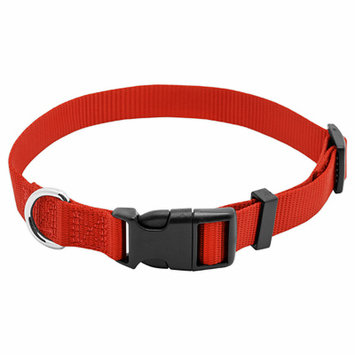 Westminster Pet Products 6 Packs PE3/4x20 RED Dog Collar