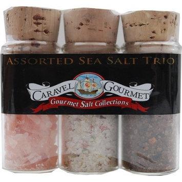 The Gourmet Sea Salt Trio Sampler Set - Himalayan Pink Ancient Fine, Garlic Medley & Smoked Bacon Chipotle - Colorful, Delicious Salts - Gluten-Free, No MSG, Non-GMO - 0.7 oz. each [Assorted]