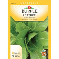 Burpee-Lettuce, Little Caesar Seed Packet
