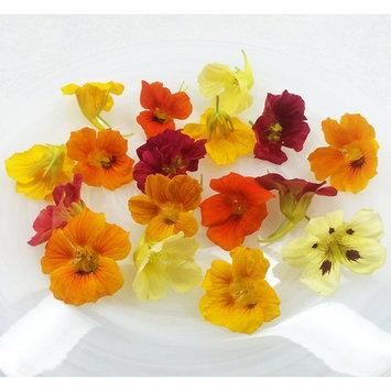 Edible Flowers Nasturtium 50 Count
