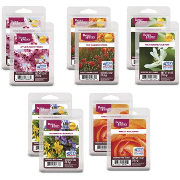 Rimports Usa Llc Better Homes and Gardens Spring Blooms Wax Cubes Assortment, 10-Pack