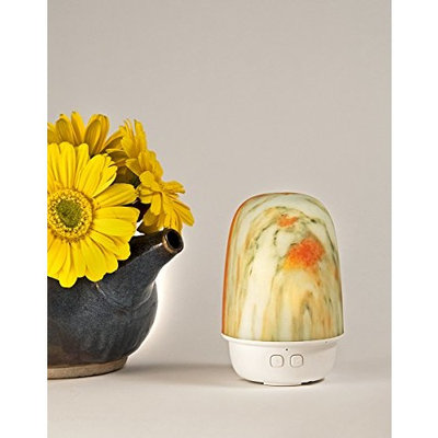 Mini Essential Oil Diffuser with LED Lights