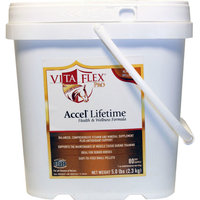 ACCEL LIFETIME HEALTH AND WELLNESS PRO 40 DAY