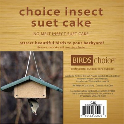 Bird's Choice Choice Insect Suet Cake - 11.75 Oz