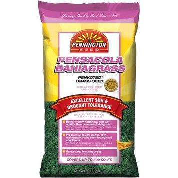 Pennington Pensacola Bahiagrass Grass Seed, 2 lbs