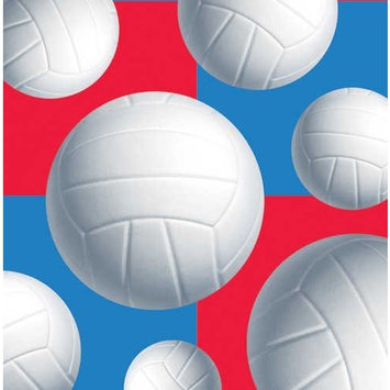 Volleyball Small Napkins (16ct)