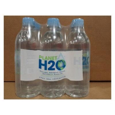 Planet H2O Water - 6pk/16.9 fl oz Bottles
