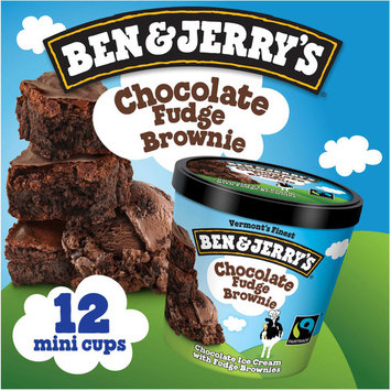 Ben & Jerry's Ice Cream Cups, 3.6 oz (Pack of 12), Variety of Flavors Available
