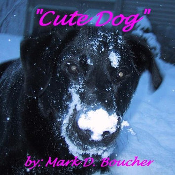 Mark Boucher Cute Dog