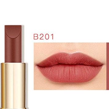 CYCTECH 25 Color Women Waterproof Matte Lip Gloss Long Lasting Lipstick Rich Color Fashion Makeup