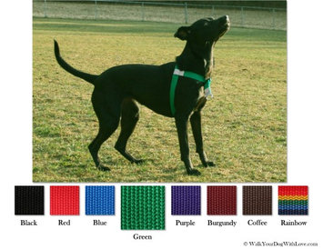 Walk Your Dog With Love No-Choke No-Pull Front-Leading Dog Harnesses, Original Edition, Sizes From 5 to 250 lbs, Kelly Green