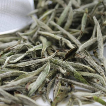 Tealyra - Silver Needle - Bai Hao Yin Zhen - White Loose Leaf Tea - Premium Chinese Tea - Caffeine Level Low - High in Antioxidants - 1.6-ounce (43g)