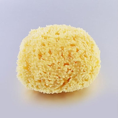 Natural Sponge, 2.6 to 3.2 Inch Aegean Sea Sponge, Silk Sponge