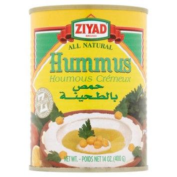 Ziyad Dip 14oz Pack of 6