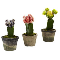 nearly natural 3-piece Colorful Cactus Set