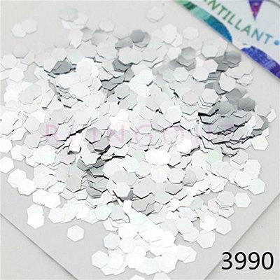 3990 Champagne Silver Series Nail Body Art Eye Shadow