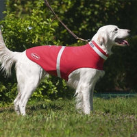 Corky's Reflective & Weatherproof Dog Jacket