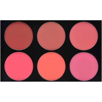 SHANY Masterpiece Large Blush Palette, 7.8 oz