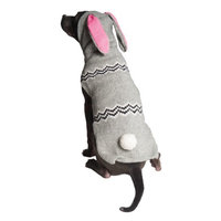Chilly Dog Bunny Dog Hoodie