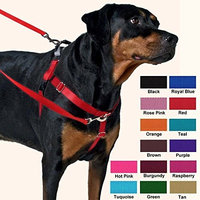 2 Hounds Design Freedom No-Pull Dog Harness, Adjustable Comfortable Control for Dog Walking, Made in USA (Leash Sold Separately) (1