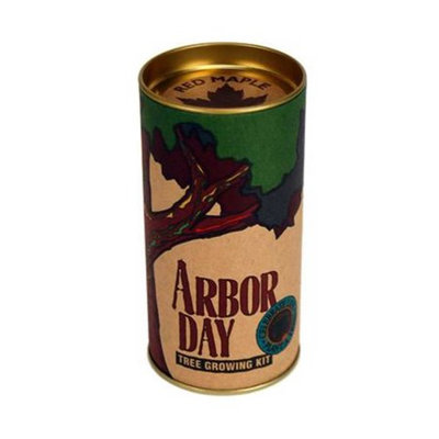 Jonsteen Company Red Maple Arbor Day Tree Kit- Grow Maple Trees from Seeds