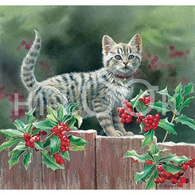 Hi-Look Inc. Susan Bourdet Cats & Flowers assorted