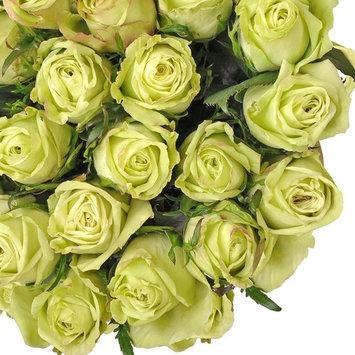 Natural Fresh Flowers - Green Roses, 20
