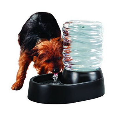 Etna Pet Dog Bubbling Water Fountain Dispenser