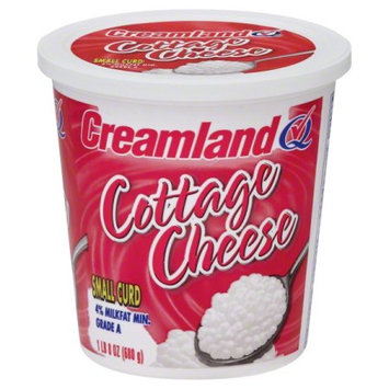 Creamland Cottage Cheese Reg