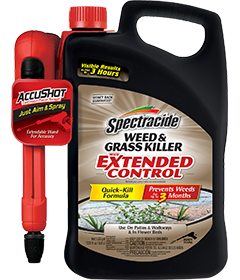 Spectracide HG-96385 Weed & Grass Killer with Extended Control, 170 Oz
