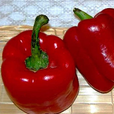 Mountain Valley Seed Company Autumn Bell Sweet Pepper Garden Seeds - 1 Oz - Non-GMO, Heirloom Vegetable Gardening Seed