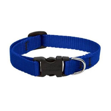 Lupine Custom Embroidered Dog Collar - Blue - 1 x 12-20 in