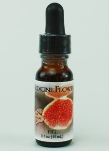Flavor Extract Natural Fig for Culinary Use By Medicine Flower