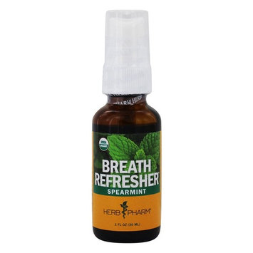 Breath Refresher Spray Spearmint - 1 fl. oz.