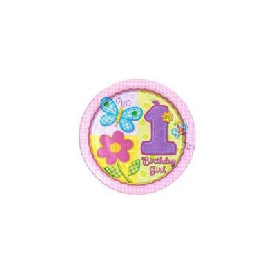 Amscan 172464 Hugs & Stitches Girls 1st Birthday Dinner Plates