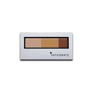 Shiseido - INTEGRATE Eyebrow Powder (BR731) 1 pc