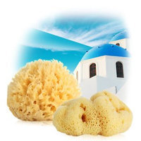 Tosowoong Natural Sponge (Honey Comb) 1pc