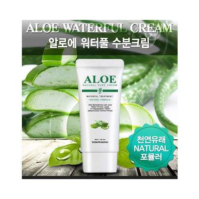 Tosowoong Aloe Waterful Moisture Cream 45ml 45ml