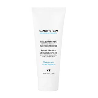 VT - Derma Cleansing Foam 100g 100g