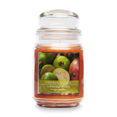 Mvp Group International Inc. 18-Ounce Papaya Guava Scented Jar Candle