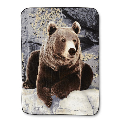 Norwood Traders Inc. High-Pile Blanket - Bear, Brown