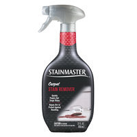 Stainmaster Carpet Care Carpet Stain Remover - 22 oz