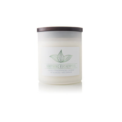 Mvp Group International Inc. Wellness Scented Jar Candle - Soothing Eucalyptus
