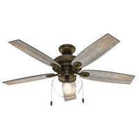 Hunter Crown Canyon 52 in. LED Outdoor Noble Bronze Ceiling Fan